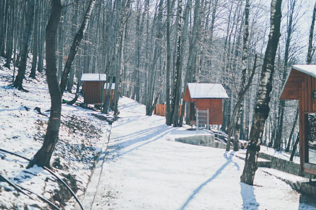 Leśny Park Niespodzianek w Ustroniu